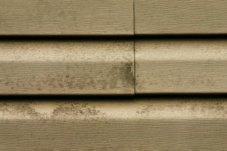 Prevent mold and mildew on vinyl siding by performing regular cleaning & maintenance on your houses siding.