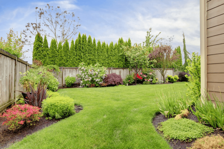 Yard maintenance and lawn treatments can keep your grass green all year long.