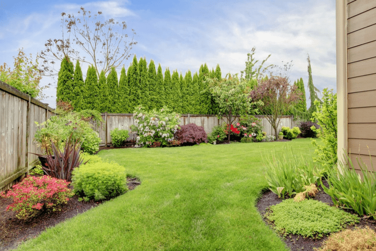 This list of lawn care how to's will help your lawn look great all summer long.