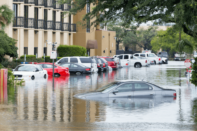 Plan ahead for emergencies with this flood safety article.