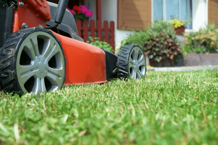 Find out what type and how much oil you should use for your pushmower.