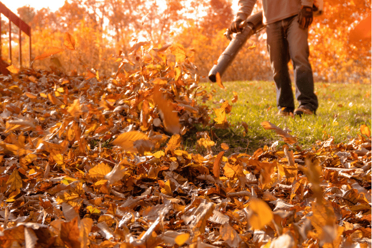 Clean up those leaves! Regular maintenance and care of your leaf blower is important when getting your equipment ready for fall.