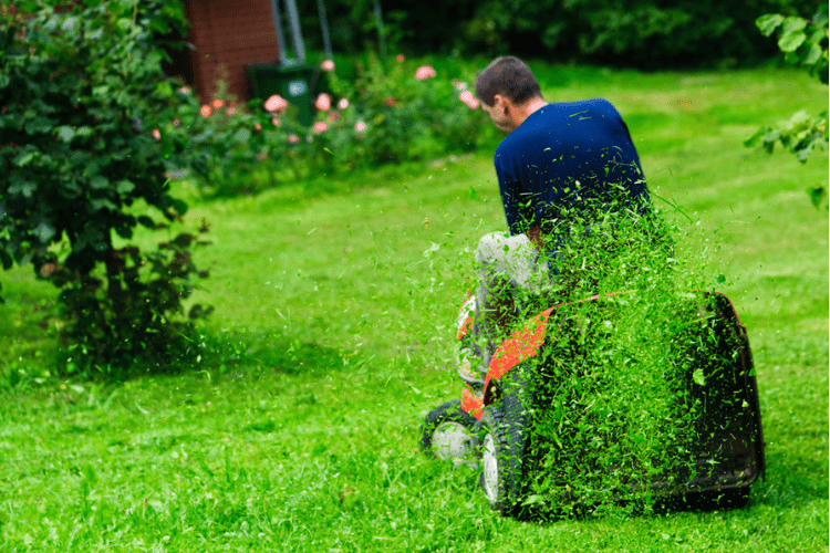 Not all maintenance needs to be performed on your riding mower every time you mow. Read on for more tips and tricks.