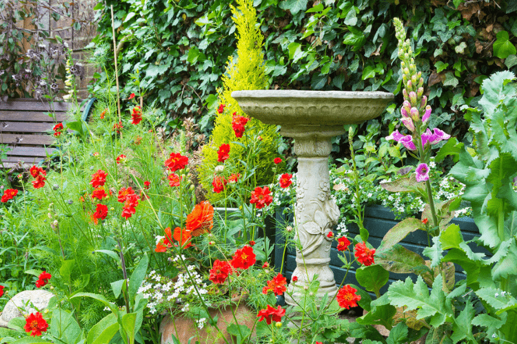 A bird bath is one easily implemented garden piece that will attract birds to your yard.