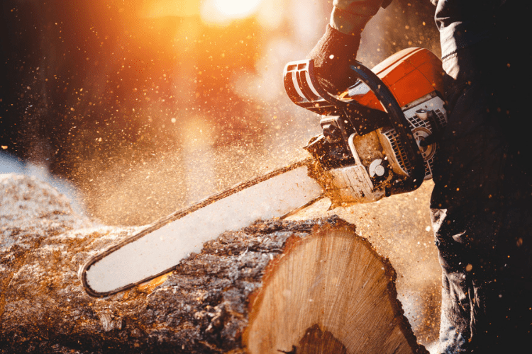 Make sure that you follow these safety tips if you plan on using your chainsaw this season.