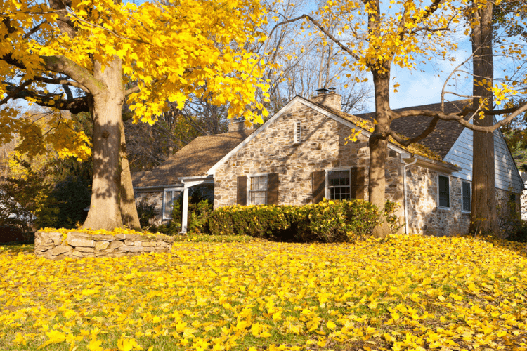 These fall cleaning tips will keep your home comfy and cozy this season.