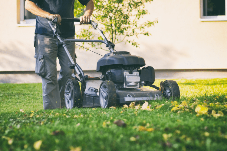 Mulching mowers can be very different than regular mowers. Find out why here.