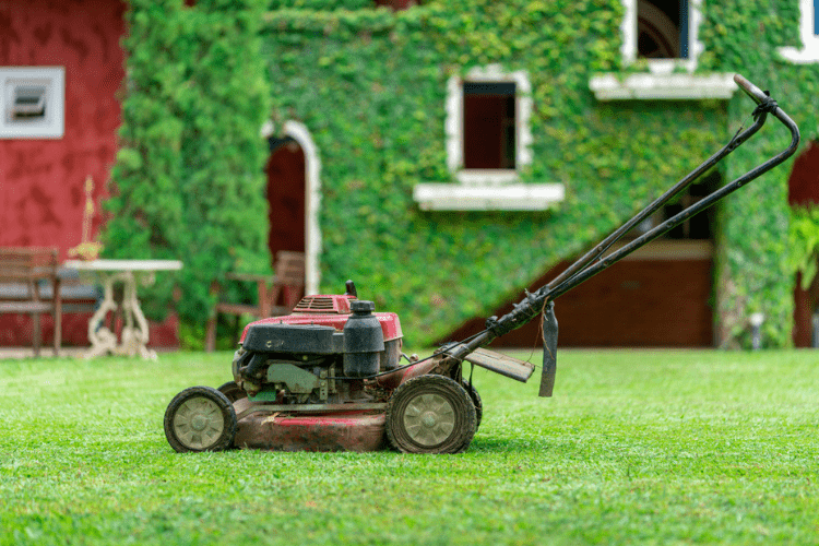 Find out why a mulching mower may be best for you.
