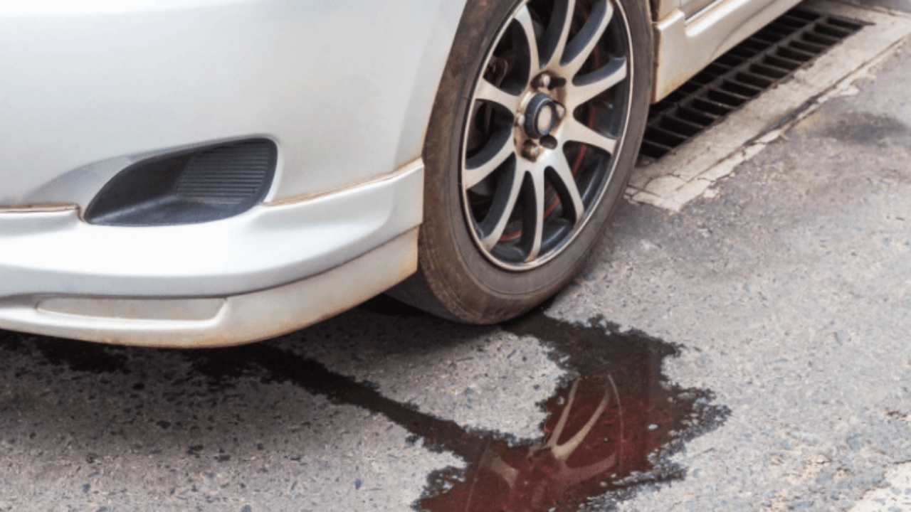 Transmission Fluid Leak >> What Is Leaking Under My Car Gold Eagle Co