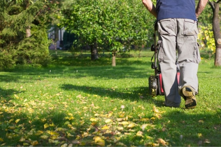 Lawn care isn't something only done during the warmer months.