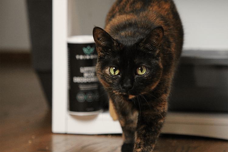 33915 trinova litter box deodorizer product with cat min