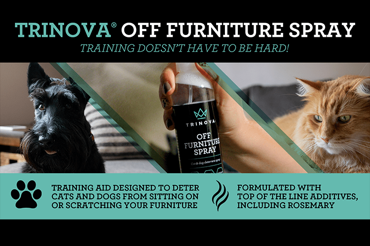33916 trinova off furniture spray infographic min